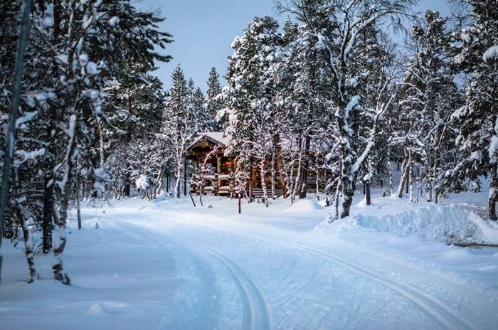 chemin nature vierge arbres sapin enneigé paysage montagne hiver maison bois lumière véranda