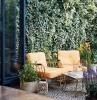 deux chaises devant un treillis de lierre dans l arriere cour idées déco pour relooker votre jardin