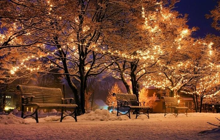 fond d écran paysage lumières festives décoration de noel extérieure arbres guirlande lumineuse