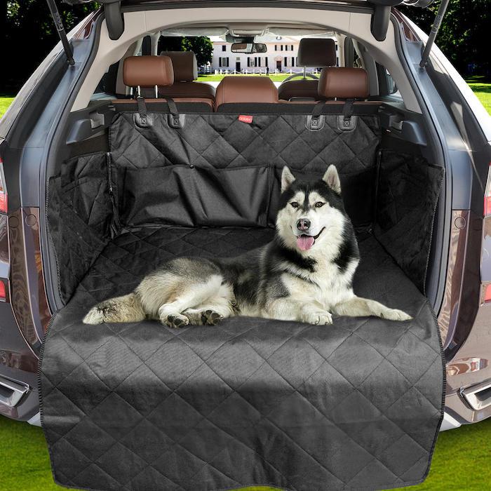 husky dans un coffre de voiture avec une couverture de protection en tissu