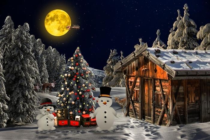 illustration magie noel nuit ciel nocturne pleine lune belle image paysage abres de noel neige