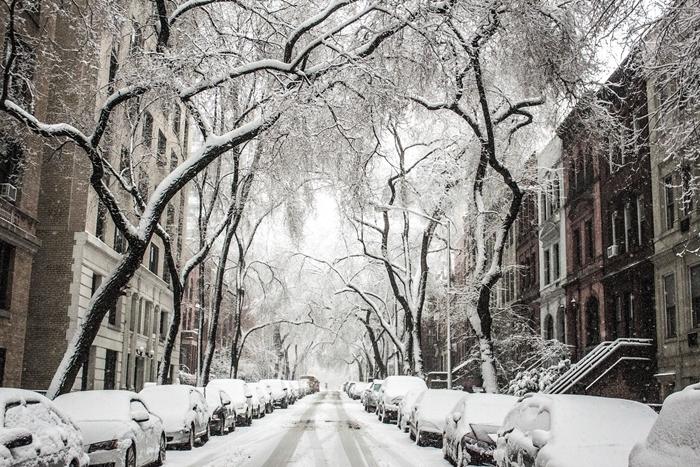 image d hiver urbain rue enneigée arbres bâtiments véhicules couvertes blancheur saison hiver