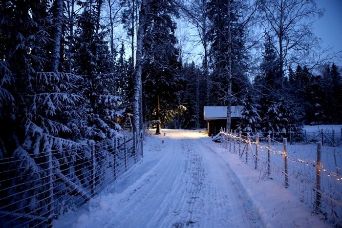 image hiver nature sauvage nuit ciel bleu clôture bois guirlande lumineuse décoration noel extérieure
