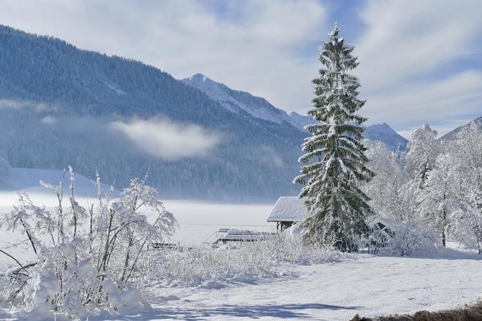 maison bois montagne vue sommets forêt paysage montagne tapis neige ciel bleu nuages