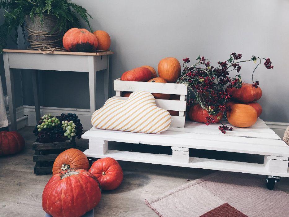 mobilier en palette pour réaliser un espace jardin exterieur palette repeinte de blanc assise décorée de citrouilles, idées déco pour relooker votre jardin