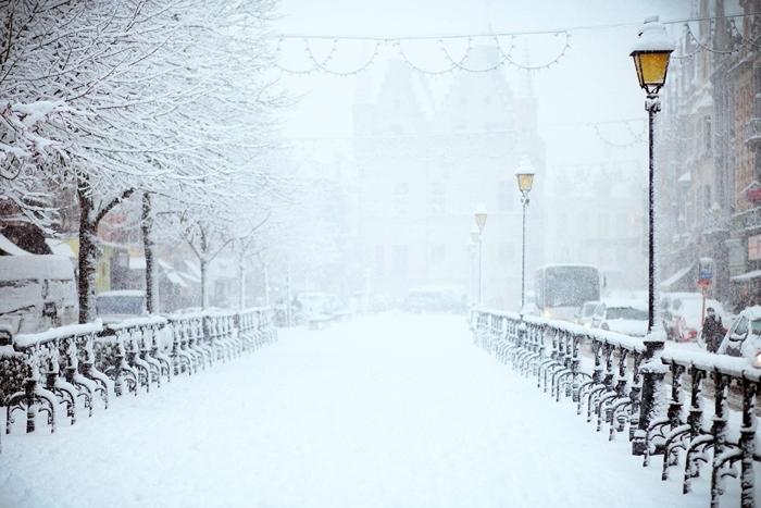 nature hiver promenade ville rue enneigée paysage de neige arbres véhicules décoration noel extérieure