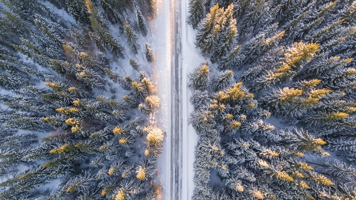 paysage nature montagne enneigée photographie drône vue d en haut sapins noel chemin neige