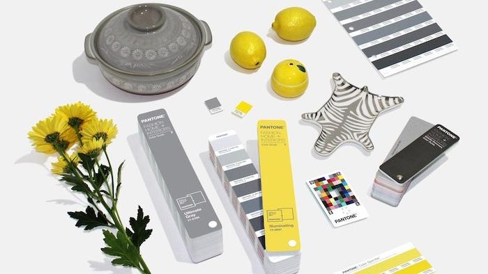 code couleur pantone pour l anée 2021 et les tendances dans la decoration de la maison