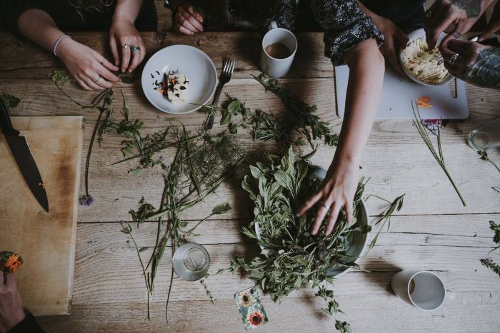 comment consommer la tisane table en bois clair massif plantes vertes herbes