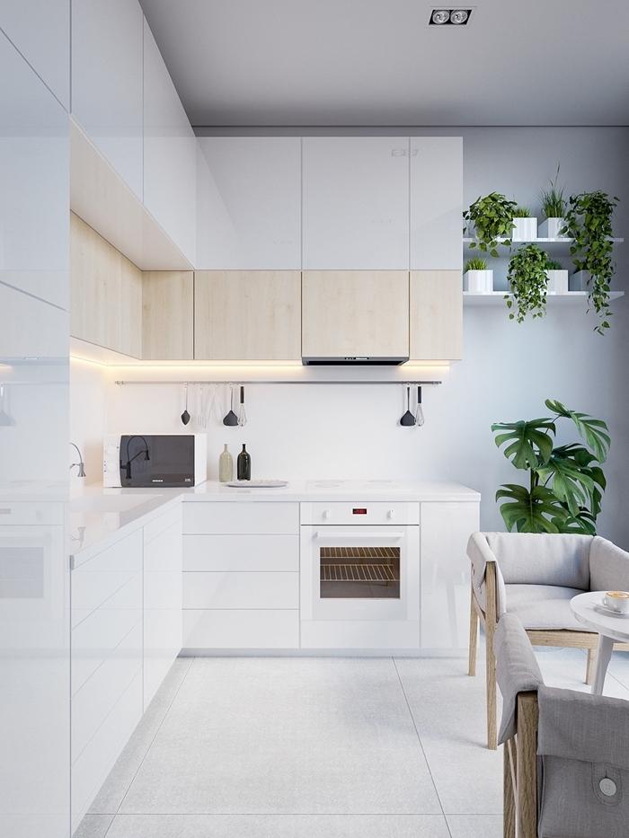décoration petite cuisine ouverte peinture gris clair plantes vertes cuisine équipée blanche meubles bois