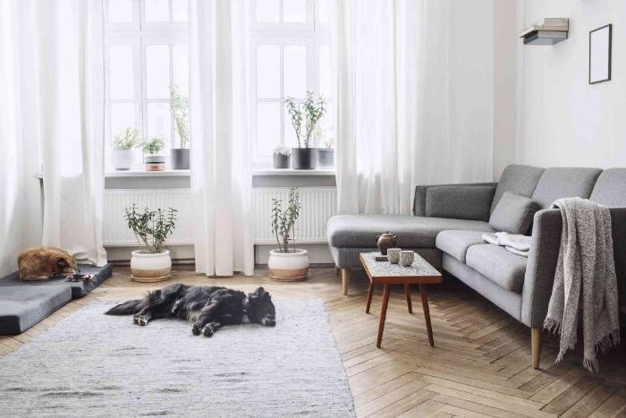 idee deco salon cosy minimaliste avec parquet chevron tapis gris canapé gris scandinave multitude de pots de fleurs rideaux blanches