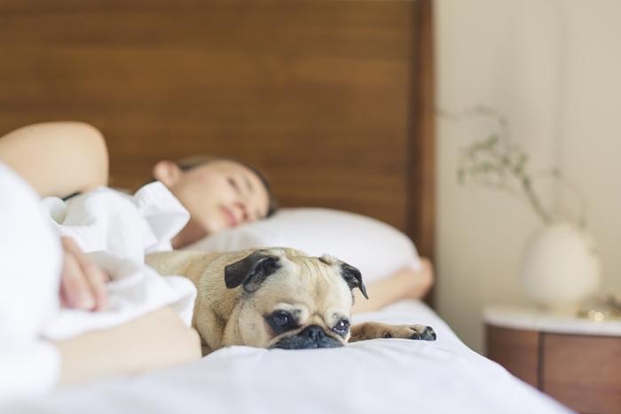 qualité bien dormir chambre à coucher choix matelas confort efficacité garantie durabilité sommeil