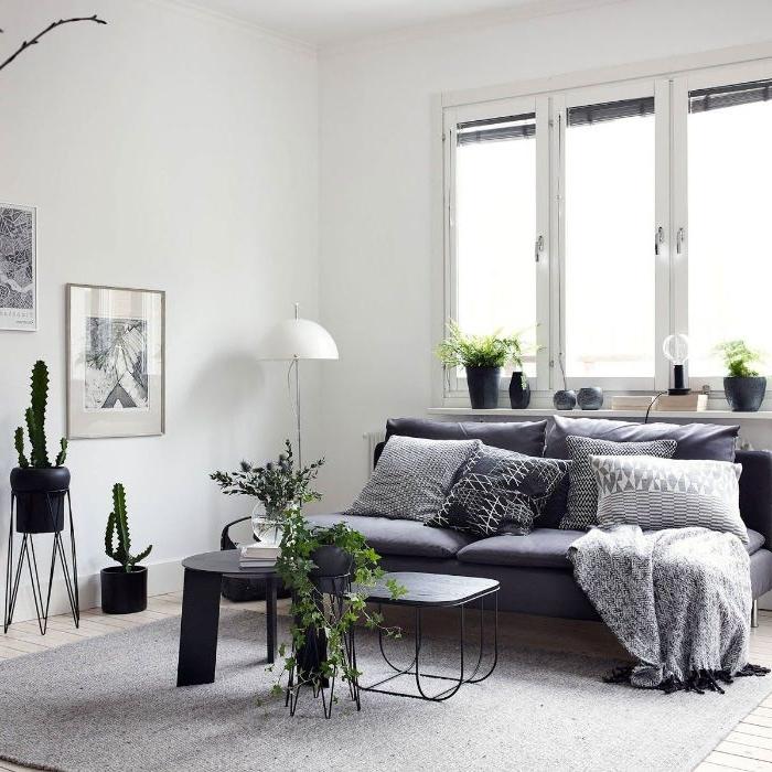 tables de couleur noire tapis gris canapé gris murs blancs décorés d art graphique tableau noir et blanc plantes vertes d intérieir