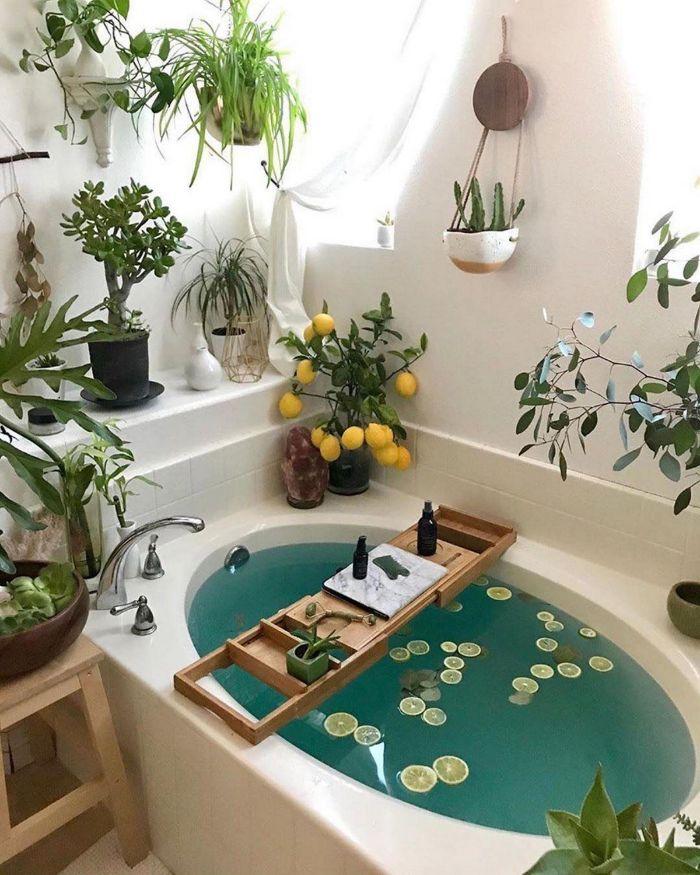 ambiance salle de bain baignoire blanche aux huiles essentielles plantes salle de bain tropicales murs sdb blancs