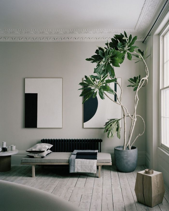 banc d assise bois décoré de coussin grosse plante en pot parquet bois clair tables basses artisanales murs blanc cassé peinture art contemporain