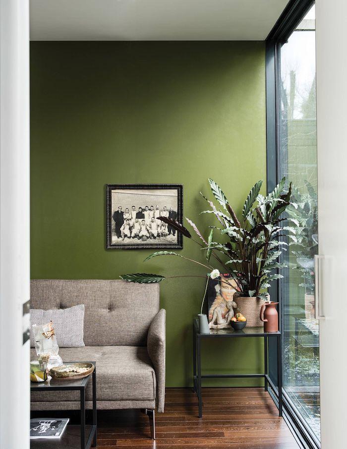 deco murale tendance un mur en couleur olive verte avec un canapé brun et des plantes vertes a coté d une grande fenêtre