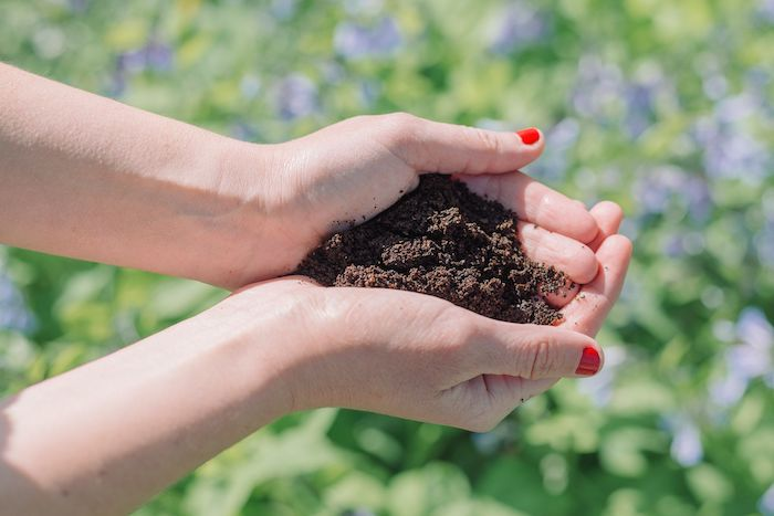 deux mains qui tiennent du marc de café au dessus de l herbe