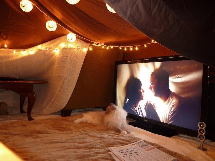 idée originale saint valentin une tente fait des drapes dans la salle de sejour un chat devant la tele