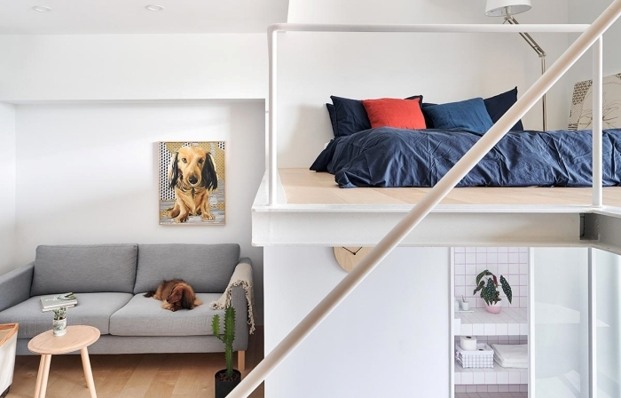 lit mezzanine studio linge de lit bleu foncé housse oreiller rouge peinture chien canapé convertible gris