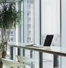 office space avec une jolie vue plantes vertes pour le bureau chaise haute