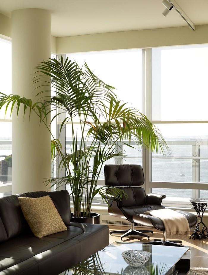 salon tendance 2021 avec des meubles en cuire et des lignes claires une grande plante verte et des beaucoup de lumière