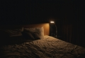 Tout savoir sur les punaises de lit : comment les détecter et éradiquer