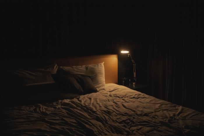 tout savoir sur punaises de lit chambre à coucher détection signes infestation insectes puces