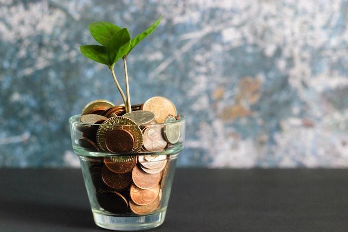 verre avec pieces de monnaies et plantes verte