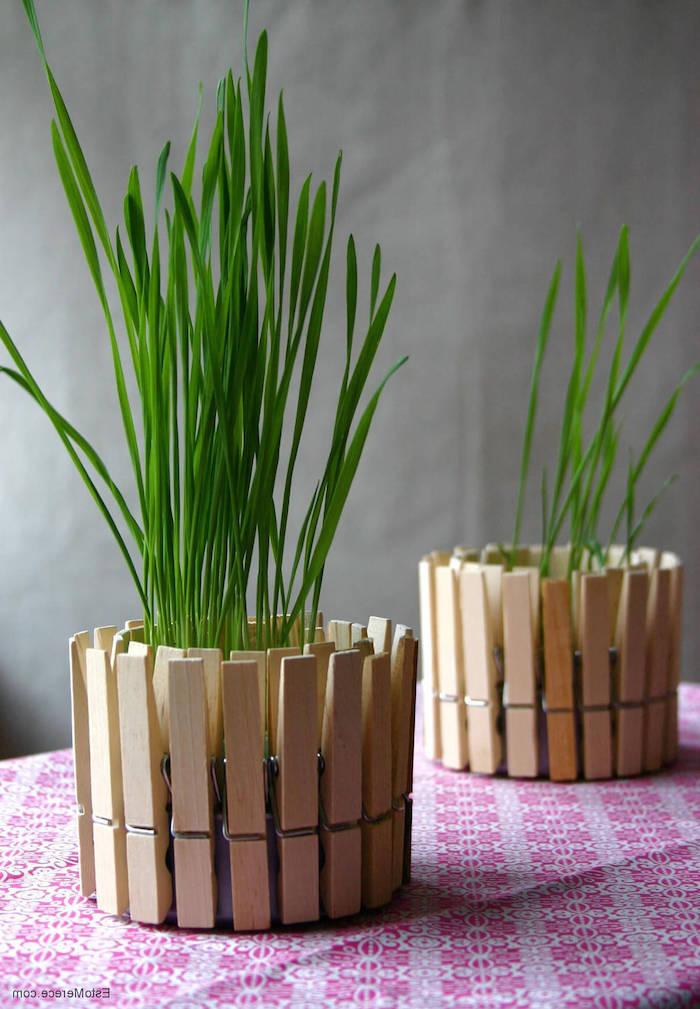 décoration avec des pots de fleurs et des pinces pour vetement deux plantes vertes sur une nappe a motifs roses création avec pot de fleur