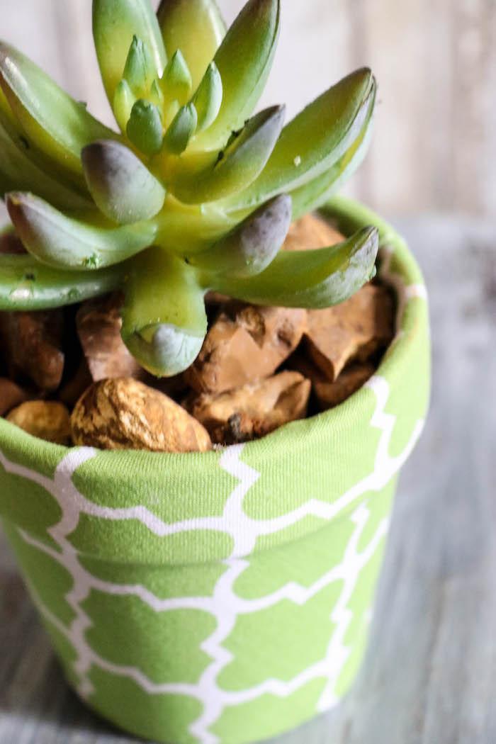décoration avec des pots de fleurs eveloppée dans une tissue en verte avec un succulent planté en dedans