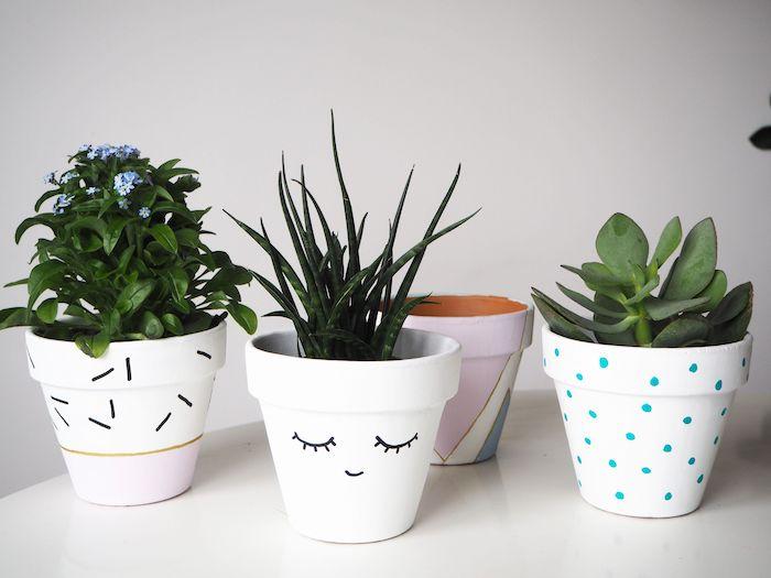 décoration pot en terre cuite peints en blanc avec des petites détailles dessinés et des succulents en dedans