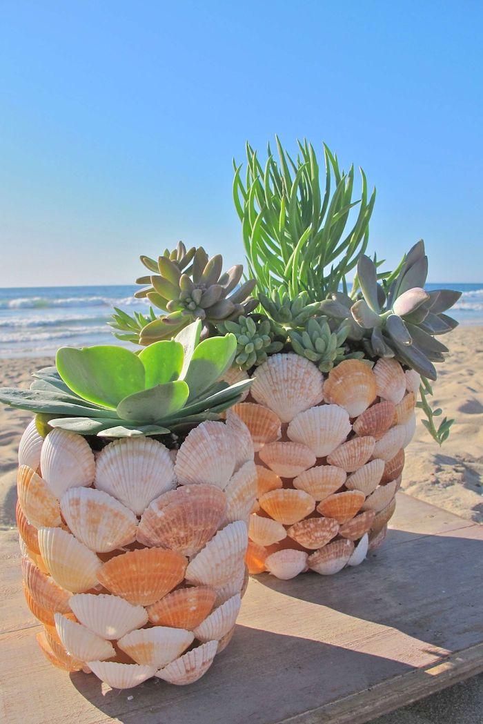 deco pot de fleur grace aux coquillages collees deux plantes sur une surface en bois au bord de la mer