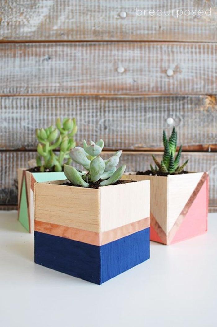 faire des cache pots de bois à motifs géométriques colorés et des plantes fleurs succulents quoi offrir pour la fete des meres