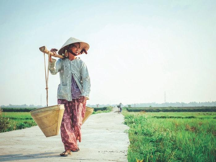 femme age qui marche champes vertes vietnam
