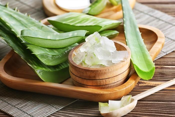 feuille d aloe vera bol bambou plateau feuille gel extraction plante médical produits cosmétique