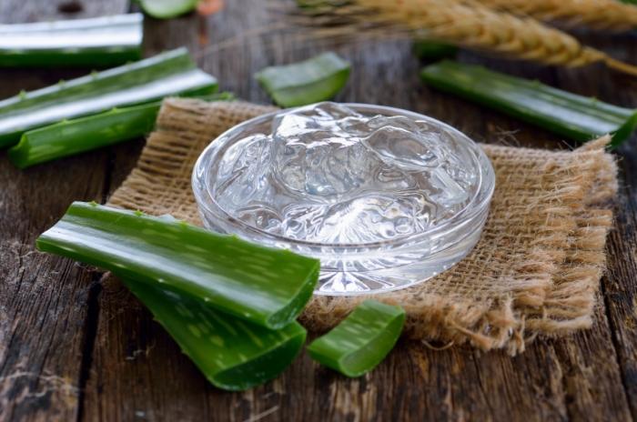 gel aloe vera extraction feuille plante bienfaits médicaux usage aloe vera traitement peau que faire avec de l'aloe vera