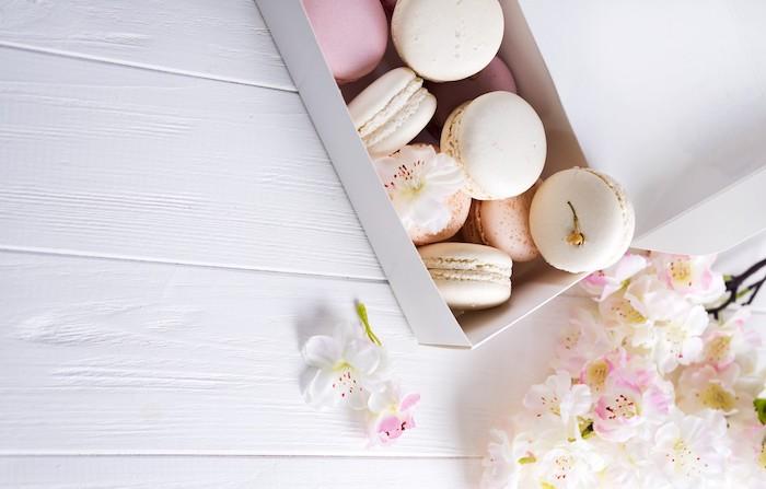 image pastel saumon et blanc avec des fleurs rose et blanc fond blanc