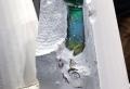 La cristallerie Daum France, spécialiste de la pâte de verre
