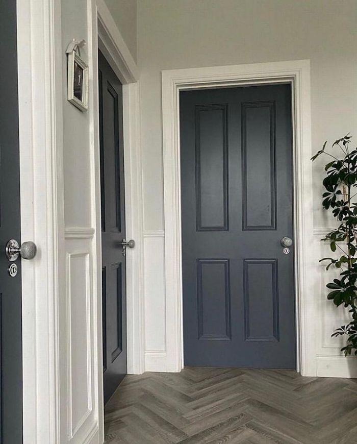 peinture couloir deux portes en bois peintes en gris avec des cadres blanches et palnte verte a cote