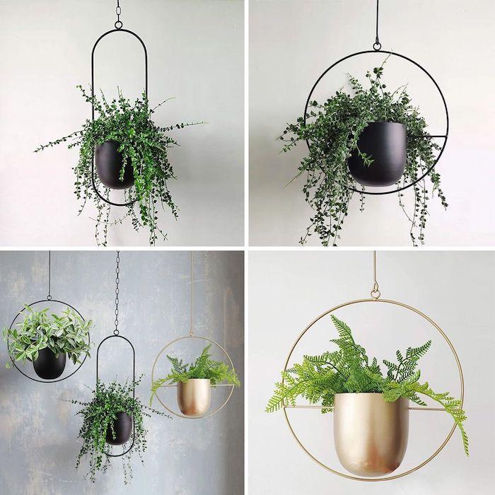 plante à suspendre et une idée de décoration avec des cercles de fer et det pots a fleur en métal