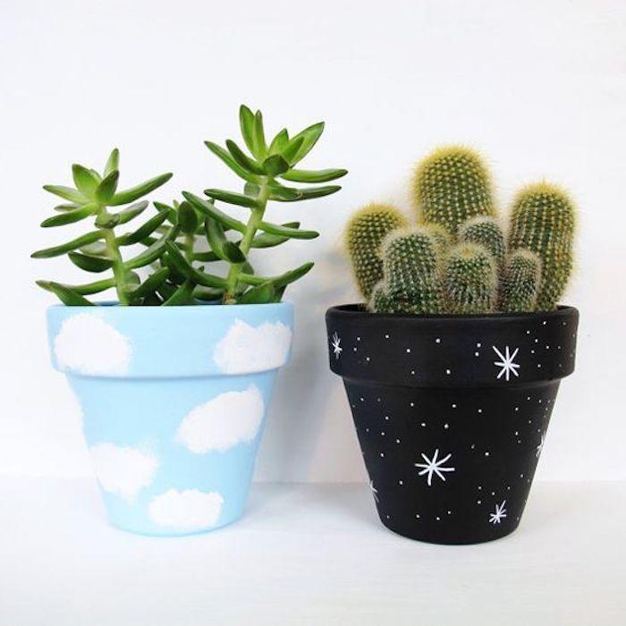 pot de fleur personnalisé un cactus et un succulent dans des pots déssinés aux motifs celestes