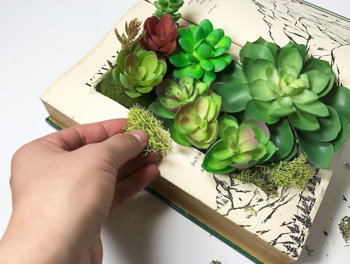 pots de fleurs originaux et insolits a la base des vieux livres avec des succulents palntes dedans