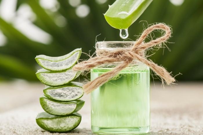 préparation boisson aloe vera gel extraction plante verte bienfaits pot verre ficelle morceaux