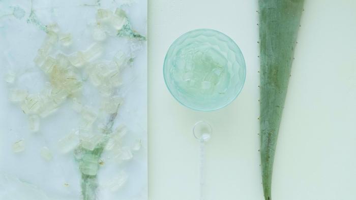 que faire avec de l aloe vera feuille plante mure extraction gel plante médicale recette