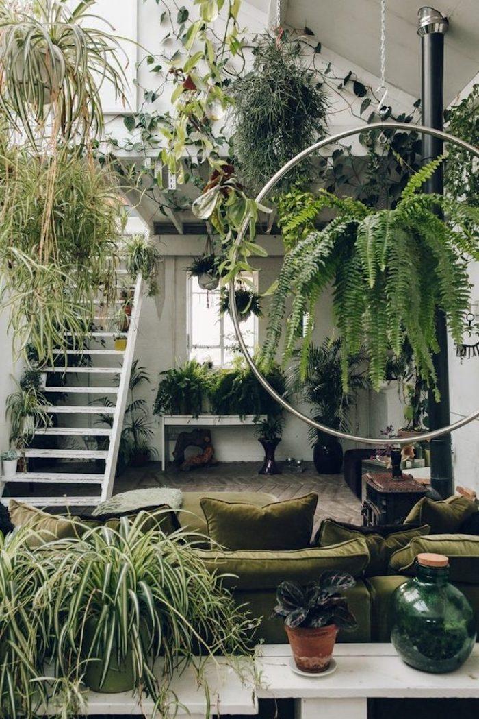 une piece avec une abondance des plantes vertes et un canape vert decore d un cercle en metal