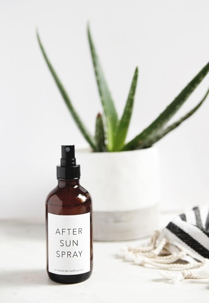 utilisation aloe vera fabrication spray après soleil plante verte médicale aloe pot blanc bouteille plastique