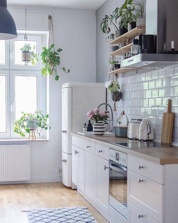 aménager une petite cuisine fermée avec des maubles blanches et plantes vertes pendantes