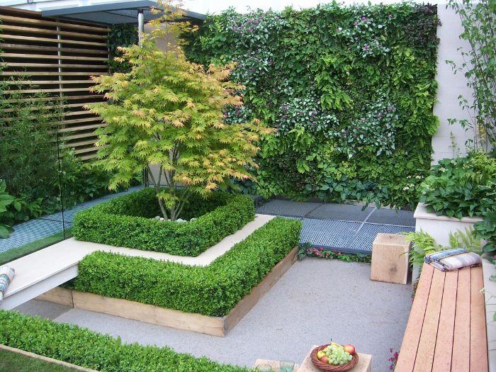 banc de bois sur une terrasse aménagée mur vegetal exterieur et buis decoratifs espace vert maison exterieur
