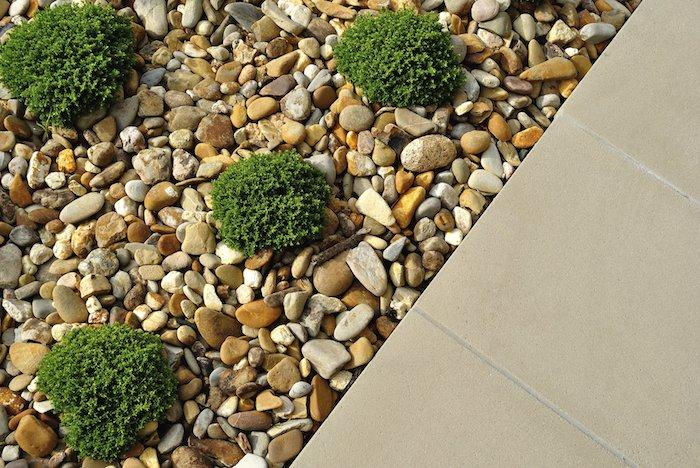 des carreaux beiges parterre et une surface couvert des galtes avec des petites arbustes rondes