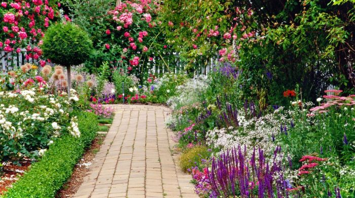 exemple de jardinage et aménagement paysager parterre de fleurs des deux cotés d un chemin de jardin buis de roses cadre naturel sauvage